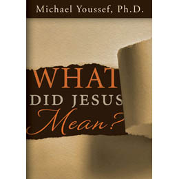 What Did Jesus Mean? (CD)