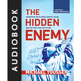 The Hidden Enemy (AudioBook)